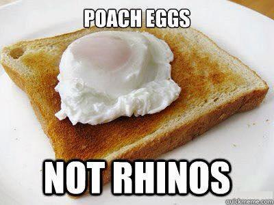 100 Ways of EarthFit- Day 95: Why Poach Eggs, Not Rhinos?