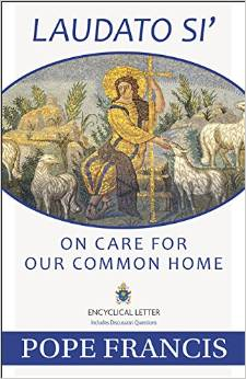 150629-papal-encyclical-on-care-for-our-common-home-cover