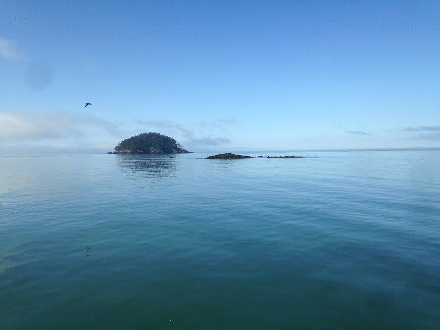 100 Ways of EarthFit- Day 69: Beach Naturalist